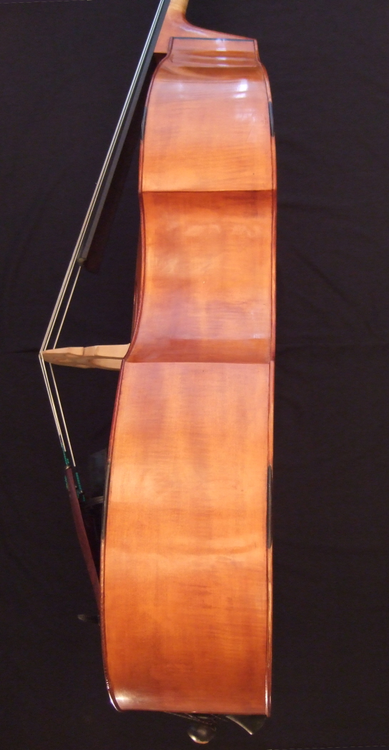 Malcolm Healey double bass side
